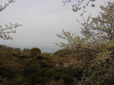 20080412_007.jpg